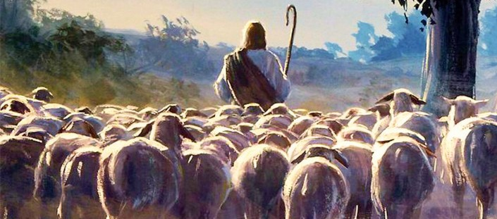 "Jesus called his disciples a ""little flock"""